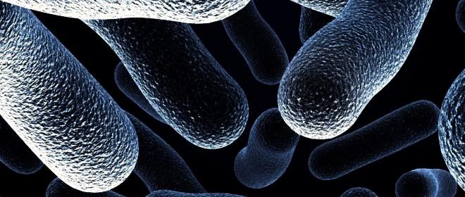 Conoscere i prodotti disinfettanti ed igenizzanti