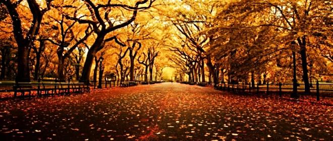 L'autunno è ormai alle porte